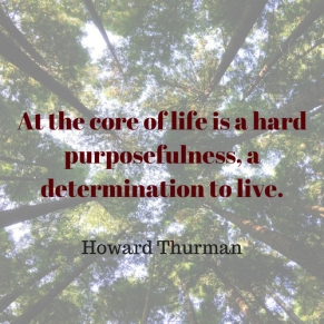 At the core of a life is a hard purposefulness, a determination to live.
